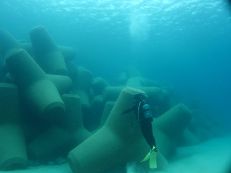 9月18日台風直前でもべた凪で潜ってます!!_c0070933_20561445.jpg