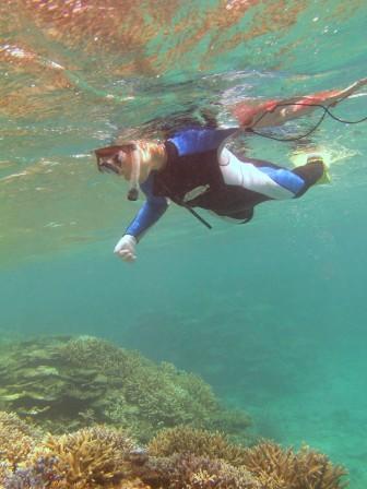 サンゴも魚もいっぱい!!_a0189838_21174325.jpg