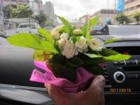 バンコクのタニア/BTSサラデーン_b0100062_21103186.jpg