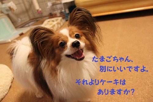 f0181462_19134232.jpg