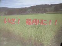 f0103873_903912.jpg