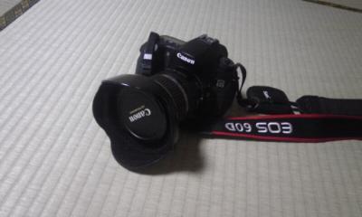 キャノン EOS 60D    ~ホテルのロビーから(汗)~_a0107574_653043.jpg