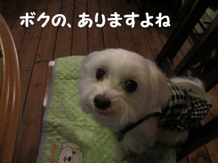 b0193480_16585437.jpg
