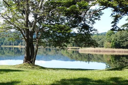 必要最少限のキッチン〜北海道湖畔キャンプ_a0116902_23405519.jpg