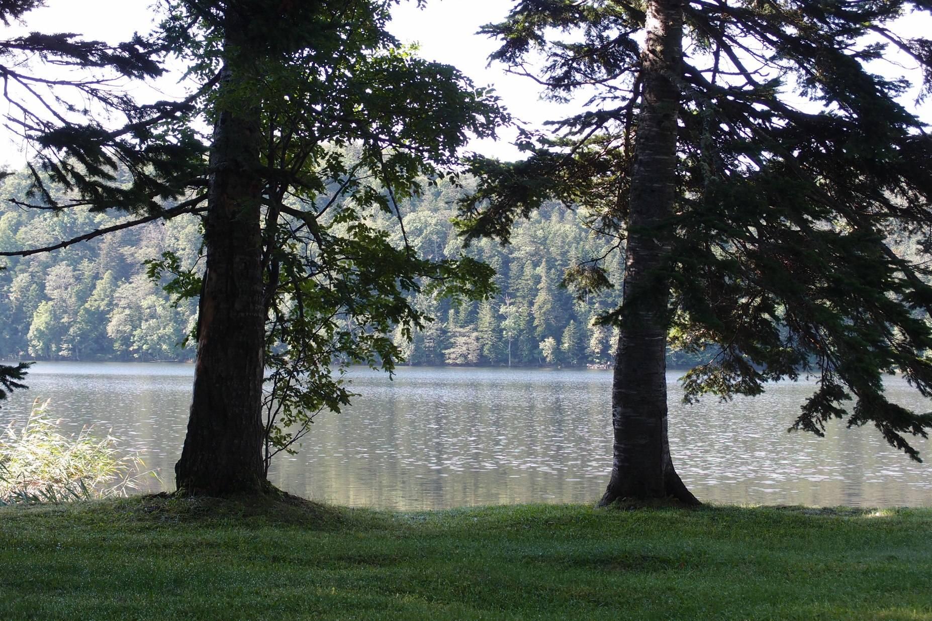 必要最少限のキッチン〜北海道湖畔キャンプ_a0116902_2362613.jpg