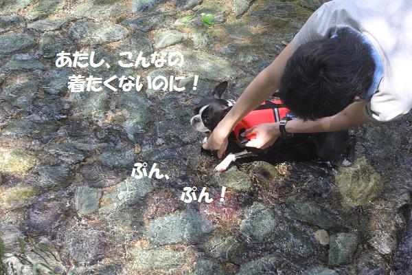f0186509_12131476.jpg