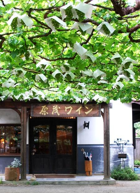 Cafe Casa da Noma@原茂ワイン_c0177814_146261.jpg