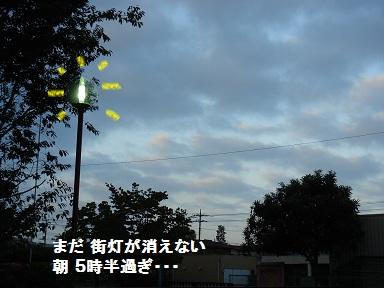 b0226221_10255923.jpg