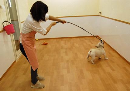 犬釣り名人のいる店 _e0236430_1282365.jpg