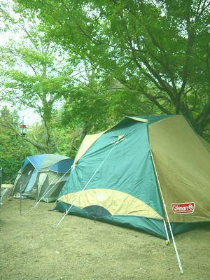 柏原渓谷キャンプ村_c0199544_21281462.jpg