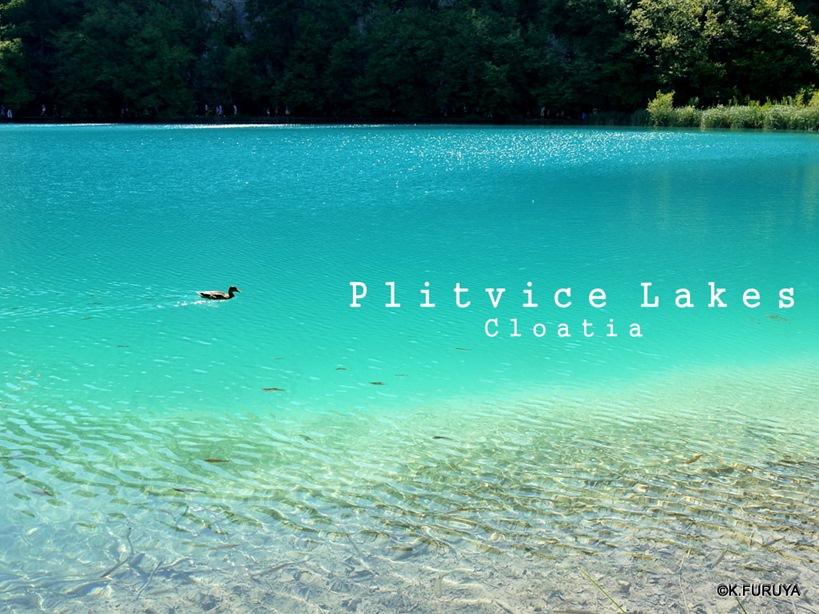 プリトヴィツェ湖群 国立公園 _a0092659_2355034.jpg