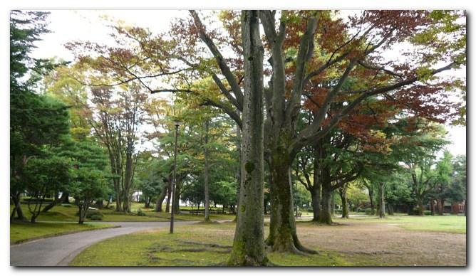 21世紀美術館~広坂~中央公園_f0079990_7555015.jpg