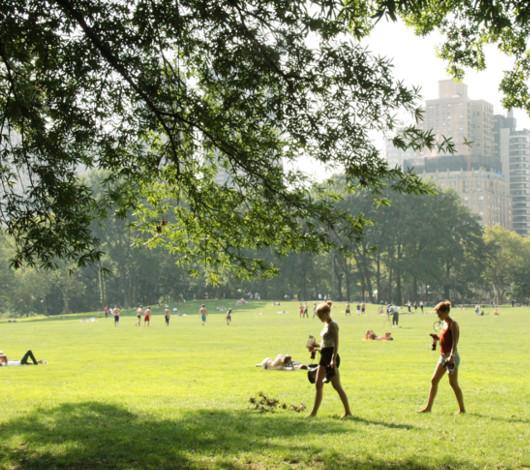 初秋のセントラルパーク、シープ・メドーの芝生でゴロ寝_b0007805_12335167.jpg