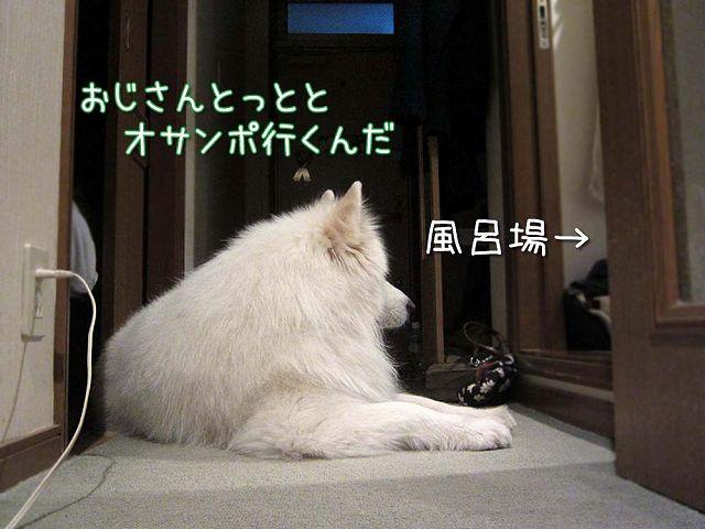 つづく_c0062832_3383396.jpg