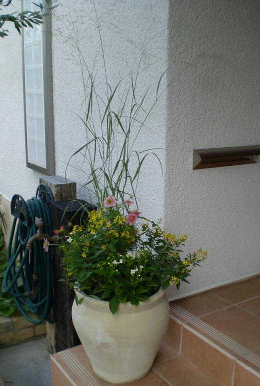 秋を感じる植物でコンテナをつくりましょう!_f0139333_13515544.jpg