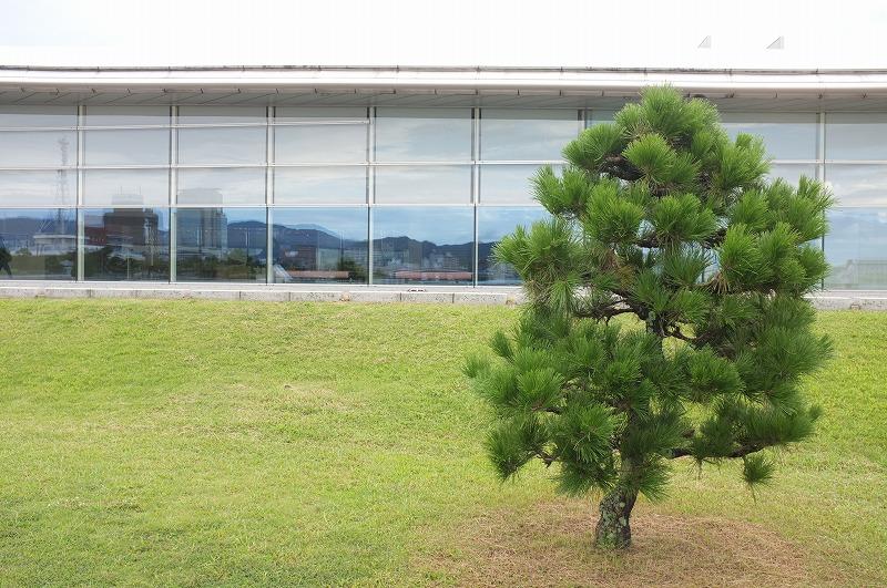 島根県立美術館_f0050534_8311076.jpg