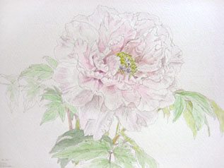 日本画教室_c0160745_219421.jpg