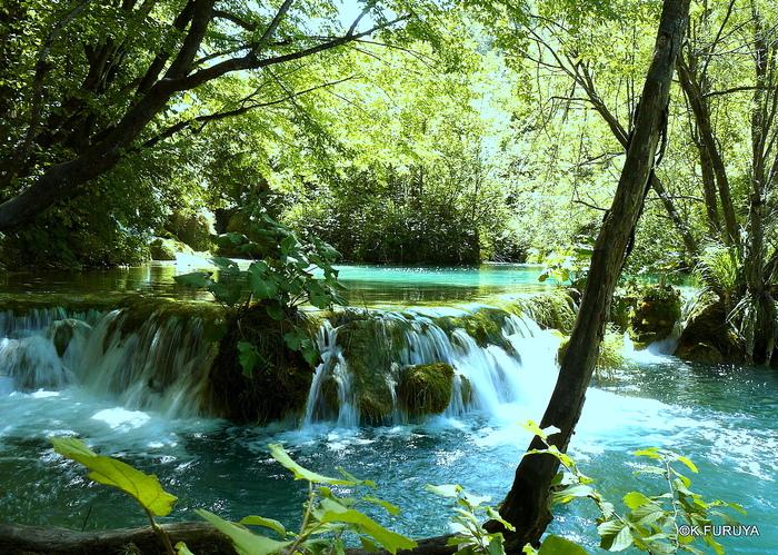 プリトヴィツェ湖群 国立公園 _a0092659_20344060.jpg