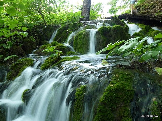 プリトヴィツェ湖群 国立公園 _a0092659_21345634.jpg