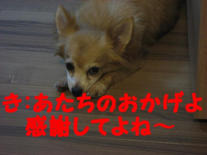b0210702_20102238.jpg