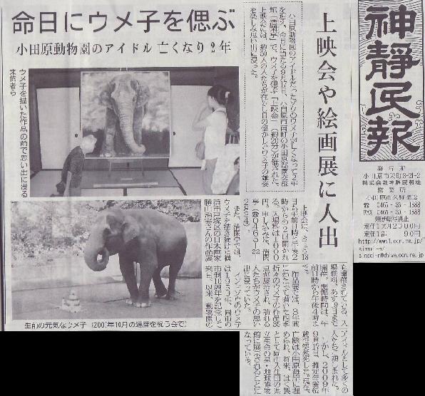 象のウメ子さんを偲ぶ日本画展&映画上映会_c0110117_1232391.jpg