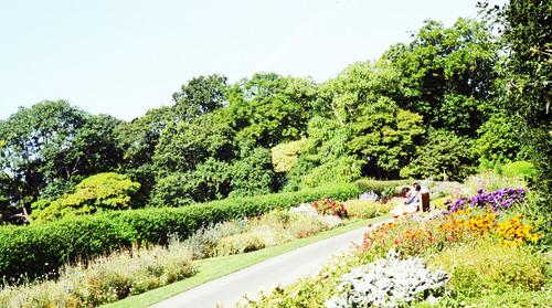 ロンドンの植物園_b0212922_13144976.jpg