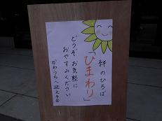 ひまわり_d0003224_103908.jpg