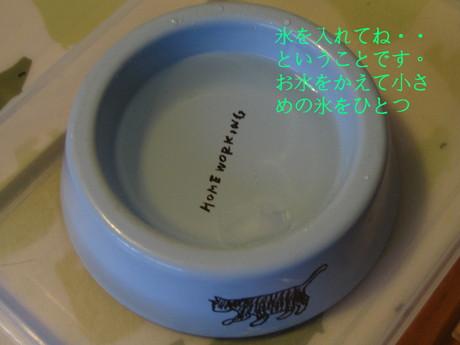 e0240925_23145992.jpg