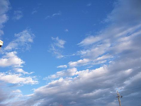 台風一過_f0129726_171757.jpg