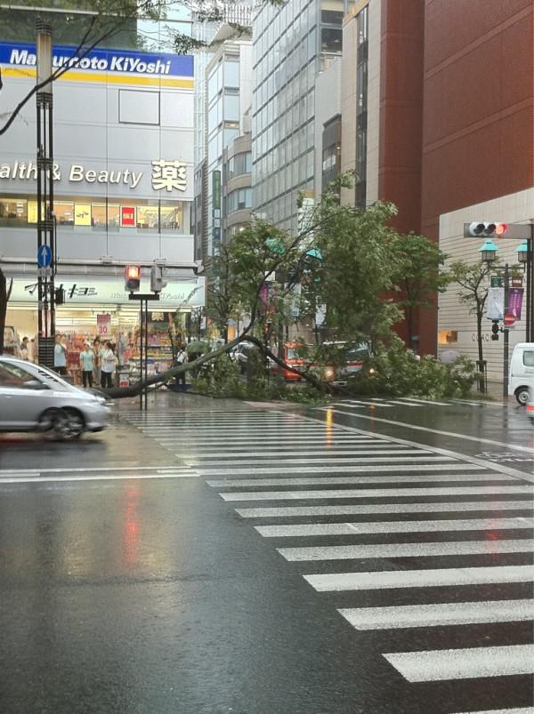 台風だ_c0193735_22525923.jpg