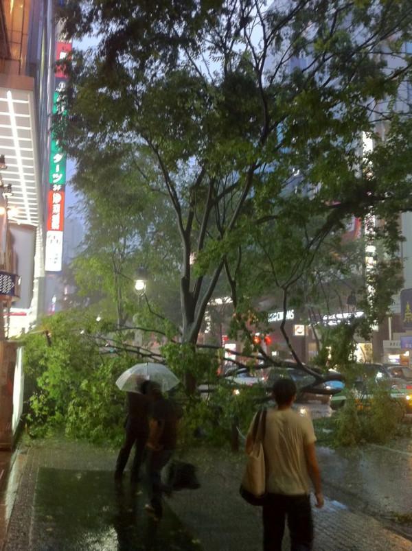 台風だ_c0193735_22532783.jpg