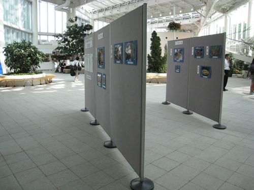学校花壇コンクール表彰式と写真展_e0145841_17122822.jpg