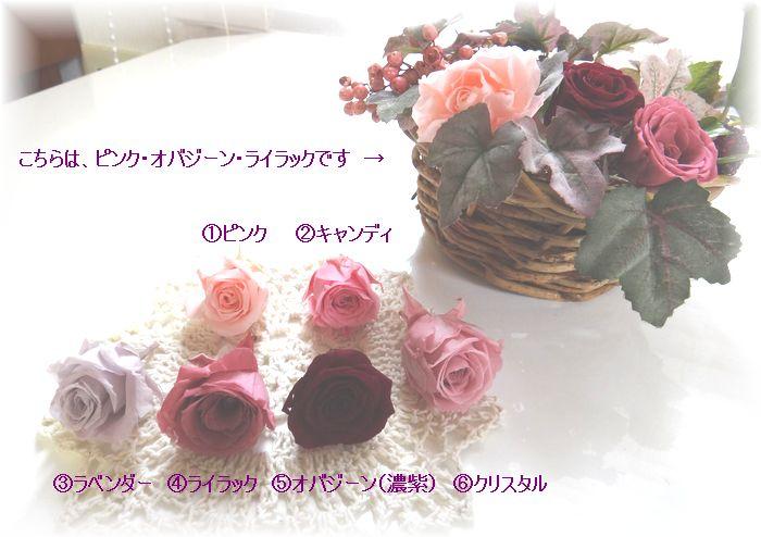 c0148773_1741792.jpg