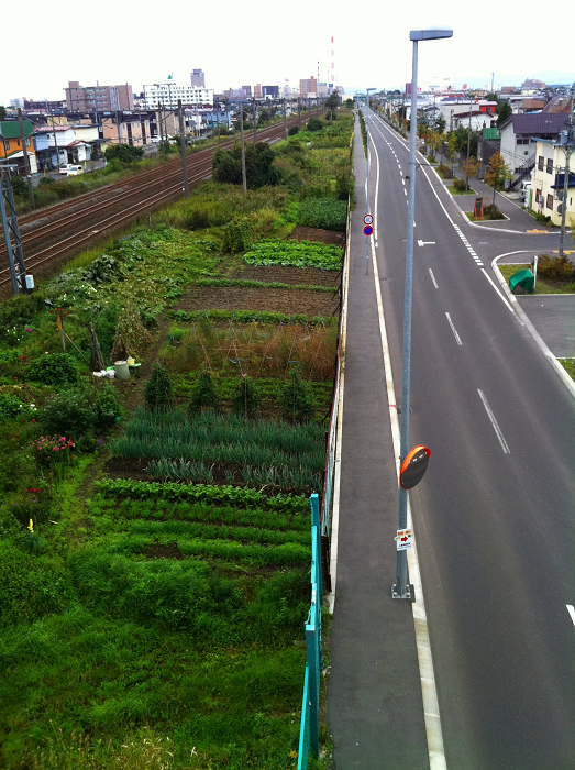 36号線陸橋より見る  駅への散歩コース_a0160581_9124085.jpg