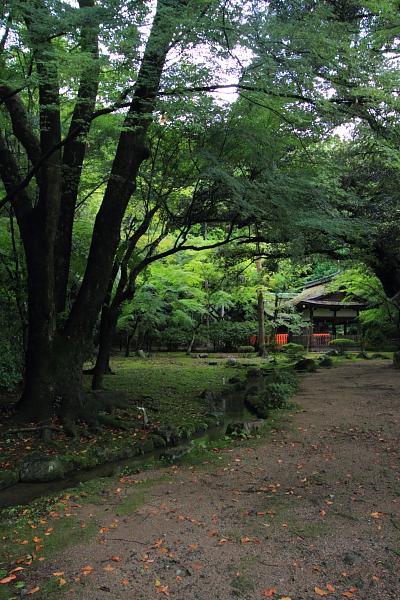 上賀茂神社_e0051888_142743.jpg