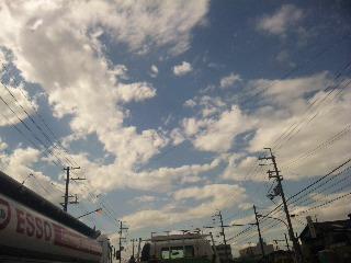 台風一過な_f0042307_13581961.jpg