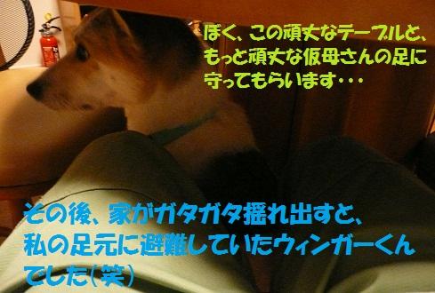 f0121712_18345550.jpg