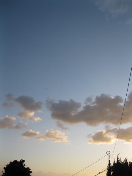 「台風」開けの「太陽」~~♪_a0125419_6471327.jpg