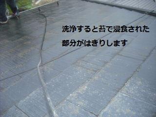 f0031037_212753100.jpg