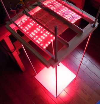 LED促成栽培装置稼働開始_c0063348_616745.jpg