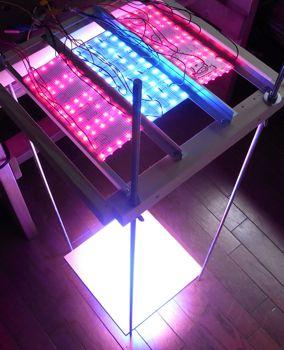 LED促成栽培装置稼働開始_c0063348_6173125.jpg