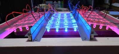 LED促成栽培装置稼働開始_c0063348_6175740.jpg