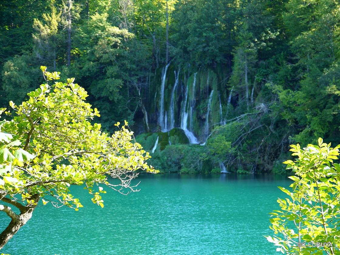 プリトヴィツェ湖群 国立公園 _a0092659_22532535.jpg