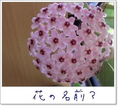 b0203273_2125155.jpg