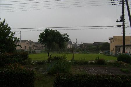 台風一過_d0000995_21332448.jpg