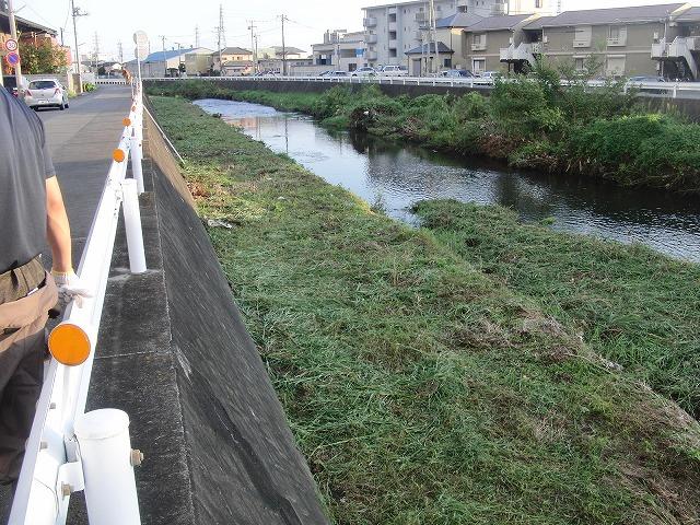「秋の芋煮会」を目標?に今年3回目の小潤井川の草刈り清掃_f0141310_8154615.jpg