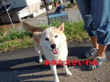 f0114128_2004326.jpg