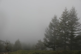 雲取山_f0230689_21473786.jpg
