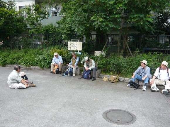 9月23日      20111年6月駒場界隈 其の一_d0249595_9232023.jpg
