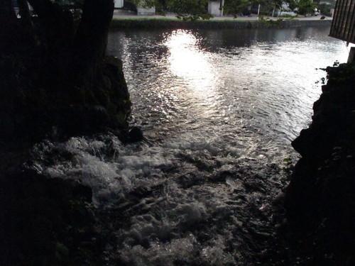水辺の文学碑の石碑 《水の都・三島市水上通り》(13)_c0075701_9161976.jpg